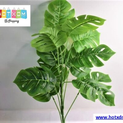 Διακοσμητικό φυτό 57cm – Μονστέρα